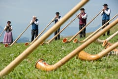 Auf dem Bild zu sehen sind Mitglieder der Formationen Laupersdorf / Fraueschüehli / Seetal. (Bild: Pius Amrein (Neue LZ))