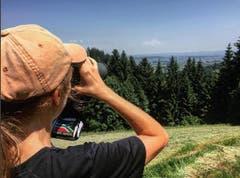 Auf dem Zugerberg: Hiking and bird watching on a mountain in Switzerland (Wandern und Vögel beobachten auf einem Berg in der Schweiz) (Bild: orp134 / Spanien)