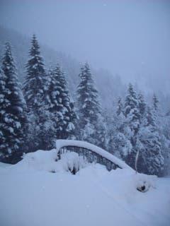 Schnee auf Sattel-Hochstuckli (Bild: Leser Dieter Brendel)