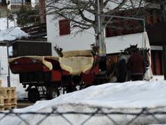 «Pferdestärken waren eine wunderbare Sache, als es nur die Pferde hatten». So ein umweltfreundliches «Taxi-Angebot» gibt es noch auf der Rigi. (Bild: Margrith Imhof-Röthlin)