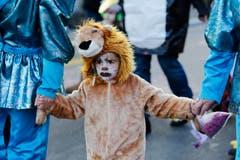 Ein Löwe. (Bild: Stefan Kaiser (Neue ZZ))