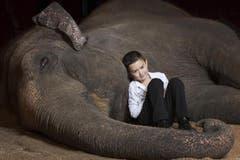 Die Familie Franco Knie jun. präsentiert eine Nummer mit den drei Elefantendamen Delhi, Ceylon und MaPalaj. Die Darbietung zeigt die enge Beziehung, das Vertrauen und den gegenseitigen Respekt zwischen Chris Rui, Linna und Franco Knie jun. und ihren Asiatischen Elefanten. (Bild: PD)