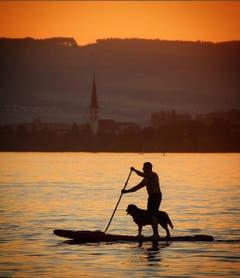 Auf dem Zugersee: A man and his best friend. Gliding through the sunset (Ein Mann und sein bester Freund gleiten durch den Sonnenuntergang) (Bild: belogradski / Serbien)
