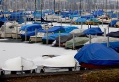 Seltenes Bild im Segelboothafen Tribschenhorn: Schiffe im Winterschlaf - eingepackt und quasi konserviert im Eis! (Bild: Heinz Schürmann)