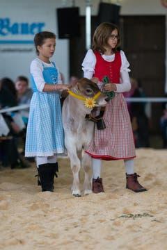Zwei Mädchen führen ein Kalb vor. (Bild: Roger Zbinden / Neue ZZ)