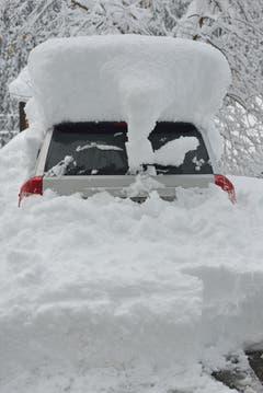 65cm Schnee im Meiental UR (Bild: Leser Peter Lienert)