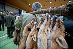 Zahlreiche Jäger waren mit ihren Fellen am Markt. (Bild: Pius Amrein (Neue LZ))
