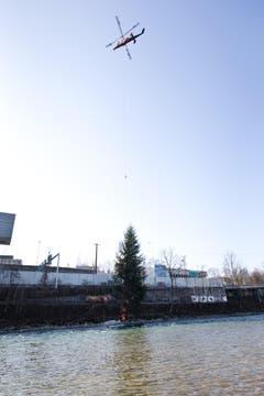 Die Tanne wird am Ufer abgesetzt. (Bild: Manuela Jans / Neue LZ)