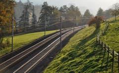 Auch ein doppelspuriges Bahntrasse hat was Schönes, Schlichtes und Schlankes an sich. Es gibt sich etwas bescheidener als die breiten Asphaltschlangen. (Bild: Niklaus Rohrer)