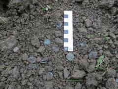 Insgesamt wurden bei der Begehung des Pfarrmättelis mit dem Metalldetektor über 50 Münzen italienischer Prägung aus der Zeit um 1560 geborgen. (Bild: PD)