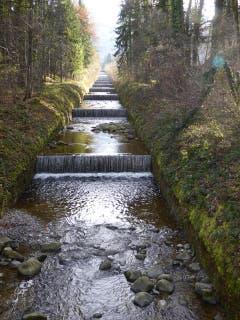 Der manchmal wilde Ränggbach bei Kriens wird durch viele Schwellen gebändigt (Bild: Hans Scheidegger)