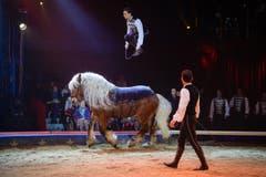 Ivan Frédéric Knie im Einsatz auf dem Pferd. (Bild: PD / Katja Stuppia, Circus Knie)