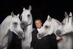 Fredy Knie zeigt ein Dressurshow mit vier Pferden. (Bild: PD)