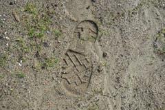 Wo früher eine grüne Wiese war, ist der Boden vom Schlamm bedeckt. (Bild: Dominik Wunderli (Neue LZ))