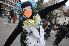 Ein Pinguin. (Bild: Marion Wannemacher)