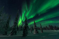 Polarlicht in Lappland über die Weihnachtstage. (Bild: Dionys Moser)