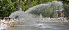 Mit Wasserpumpen wird in Magdeburg gegen das Elbe-Hochwasser gekämpft. (Bild: Keystone)