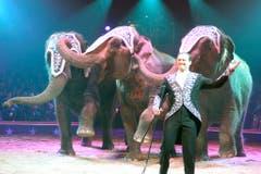 Franco Knie jun. mit seinen Elefanten. (Bild: Keystone)