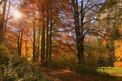 Ein grandioser Herbsttag im Neuenburger Jura (Bild: André Egli)