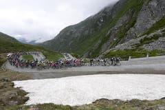 Das TdS-Feld am Gotthard. (Bild: Keystone)
