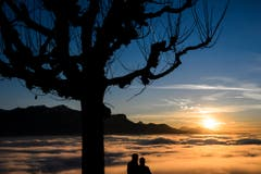 Über dem Nebelmeer in Chardonne am Genfersee. (Bild: Keystone)