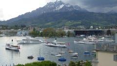 Das Motorschiff Diamant (zweites von links) wird im Luzerner Seebecken von den Dampfschiffen willkommen geheissen. (Bild: Leser Peter von Arx)