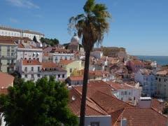 Ueber den Dächern von Lissabon, mit Pantheon. (Bild: Josef Habermacher)