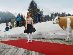 2. Preis Kategorie Kunst und Kultur - Martin Guggisberg - Miss (Series) - Miss Tourismus Switzerland 2010, Berghaus Gobeli, Zweisimmen. (Bild: Keystone)