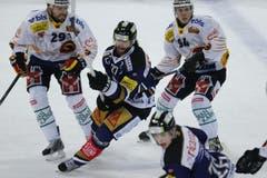 Zugs Josh Holden und Berns Philippe Furrer (links) und Christoph Bertschy (rechts). (Bild: Stefan Kaiser / Neue ZZ)
