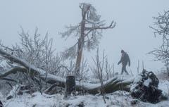 Im Taunusgebirge in Deutschland herscht mystischer Nebel. (Bild: EPA/BORIS ROESSLER)