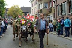 OK-Präsident Walter von Rotz führt das Senten der Alp Hinter Stalden an. (Bild: Robert Hess (Neue OZ))