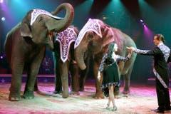 Franco Knie jun. mit seiner Frau Linna bei einer Elefantendressur-Nummer. (Bild: Keystone)