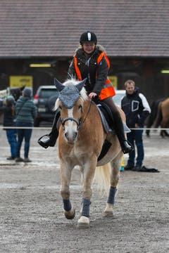 Ross und Reiter beim Parcours. (Bild: Roger Zbinden / Neue ZZ)