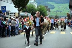 Den beiden Hirten folgen die Tiere von der Ochsenweid auf dem Buochserhorn zurück ins Tal. (Bild: Christoph Riebli)