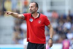 Luzern-Trainer Markus Babbel gibt Anweisungen. (Bild: Philipp Schmidli)