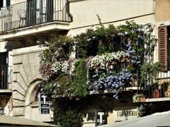 """Auch mitten in Rom findet man solche """"Wohlfühl-Oasen"""", auch wenn es nur ein ganz kleiner Balkon ist. (Bild: Margrith Imhof-Röthlin)"""