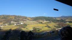 Noch haben die Weinberge ihr Herbstkleid im Südtirol. (Bild: Hanny Wirz)