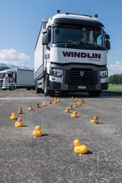 Die Trucker messen sich im Geschicklichkeitsparcours. (Bild: Boris Bürgisser, Luzerner Zeitung / Alpnach, 27.05.2017)