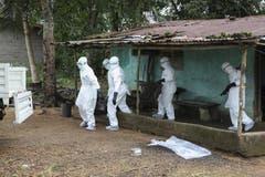 Nachdem sie ein Ebola-Opfer aus diesem Haus holten, desinfizierten diese liberianischen Einsatzkräfte das Gebiet rund um das infizierte Haus. (Bild: Keystone)