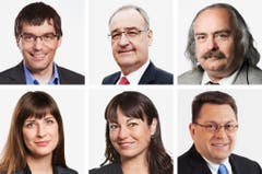 WAADT (3/3) - (obere Reihe von links) Roger Nordmann (bisher), SP; Guy Parmelin (bisher), SVP; Luc Recordon (neu), Grüne. (untere Reihe von links) Rebecca Ruiz (bisher), SP; Geraldine Savary (neu), SP; Laurent Wehrli (neu), FDP. (Bild: Keystone / Handout)