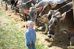 Evelyn Appert begutachtet die Kühe. (Bild: Eveline Beerkircher)