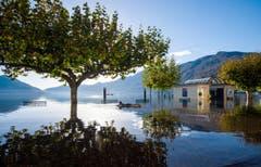 Tourist Adash schwimmt auf einer Luftmatratze im Wasser am Lago Maggiore in Ascona. (Bild: Keystone)