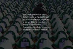Text (Bild: luzernerzeitung.ch)