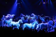 Pferde gehören seit jeher zum Knie-Programm - hier präsentiert von Maycol Errani. (Bild: Keystone)