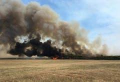In Australien steht der Sommer und damit die Buschbrandsaison bevor. (Bild: Keystone)