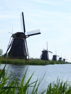Diese alten Windmühlen befördern Wasser aus tiefer liegenden Gebieten über Kanäle auf Meereshöhe (Bild: Hans Scheidegger)