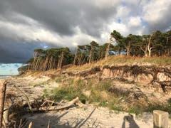 Naturstrand an der Ostsee (Bild: Liliane Schweizer)