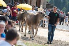Hauptpreise für den Erst- und Zweitplatzierten waren das Rind Susi und das Rind Tamara. (Bild: Maria Schmid)