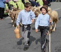 """Zwei """"Geissäbuebä"""" mit ihrer kleinen Herde. (Bild: Robert Hess (Neue OZ))"""