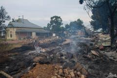 Medienberichten zufolge sollen auch tausende Hühner und Schweine den Flammen zum Opfer gefallen sein. (Bild: Keystone)